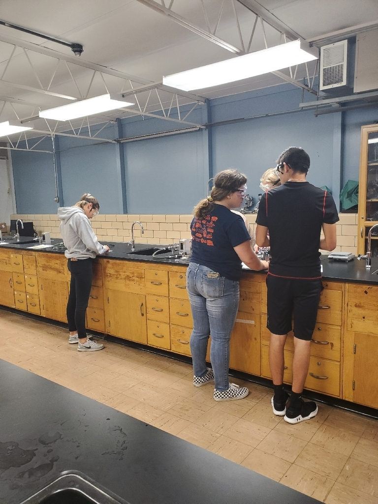 chem - 7th hr - penny lab 2