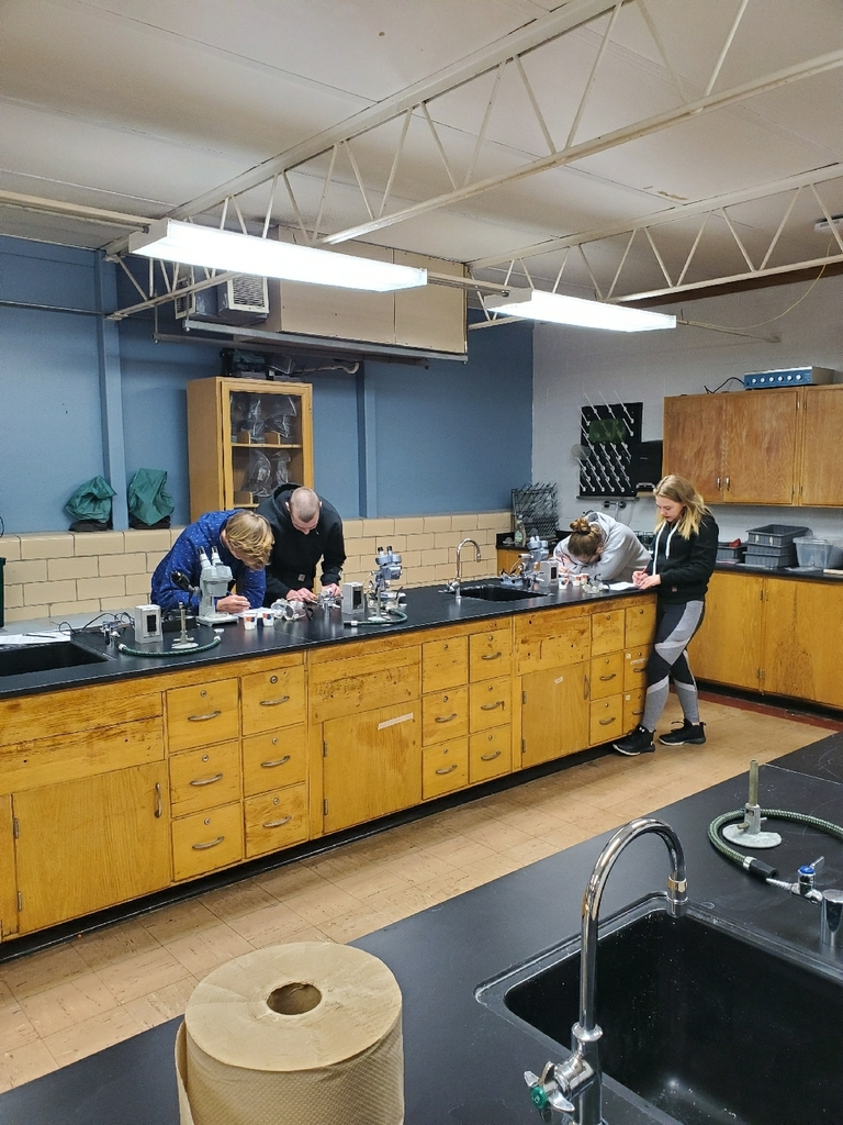 Chem - 2nd hr - ionic bonding lab